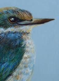 new zealand kingfisher painting