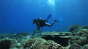 Vietnam Excursions, Ninh Van Bay Luxury Holidays - Six Senses