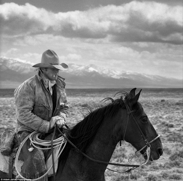 "barnwoodanchors:    ""For years, photographer Adam Jahiel has been taking pictures of the cowboys of Nevada's Great Basin, perhaps one of the most inhospitable regions of the already harsh West (see more from his black and white series The Last Cowboy here).""  -dailymail.co.uk"