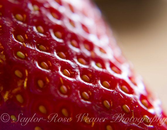 Strawberry Close up Photograph 8x10 by Raavynn on Etsy, $25.00