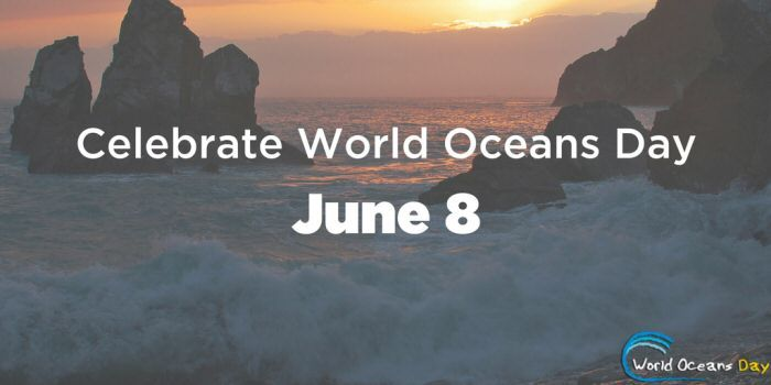 World Oceans Day Jun 8th 2017 World Oceans Day is held on June 8th each year. This year's theme is Our Oceans, Our Future. The main conservation focus for 2017 will be on plastic pollution prevention and cleaning the ocean of marine litter.