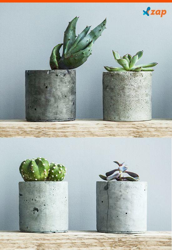 O cultivo de certas plantas pode não só deixar a casa mais charmosa, mas criar uma barreira contra os insetos. Clique na imagem e confira quais são as plantas com repelentes naturais.