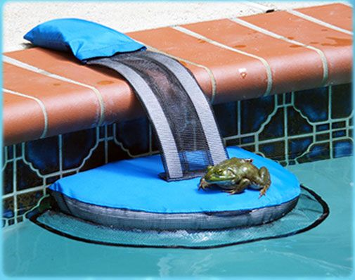 Once a frog, mouse, or other animal falls into a swimming pool, they instinctively swim toward the pool wall trying to escape. The animal will circle around the edge of the pool looking for a way out. The animal will bump into the FrogLog, climb up the platform, climb the mesh ramp, and exit the swimming pool. Some animals will use the FrogLog as a visual clue for escape and swim towards it