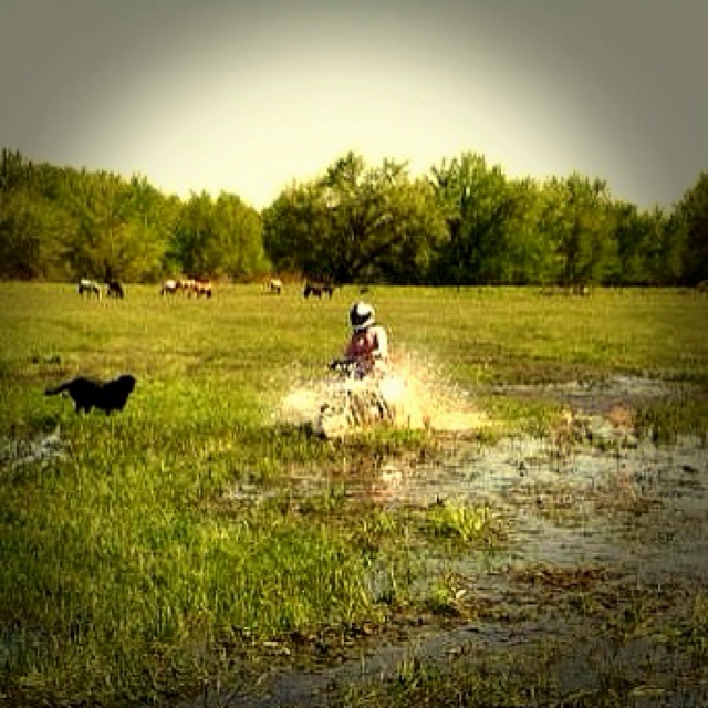 Bought a dirt bike and thought its perfect weather to go mudding (: