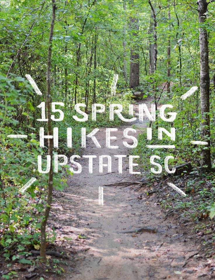 Spring has OFFICIALLY sprung. Get outside and enjoy it! Check out this list of hiking trails recommended by the local community! // yeahTHATgreenville