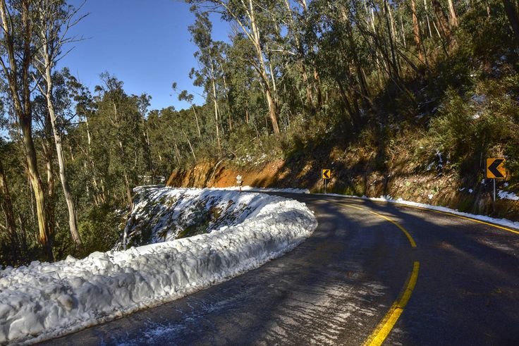 RoyalAuto, September, 2016. Take the high road. Omeo Hwy on Mt Wills. Photos: Anne Morely. #omeo #omeohwy #mtwills #snow