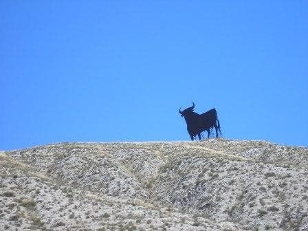 Iconic BULL on the side of Spain's main highways
