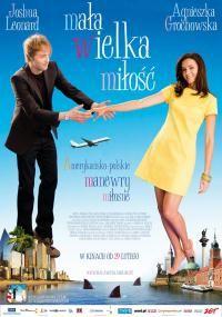 Mała wielka miłość (2008)