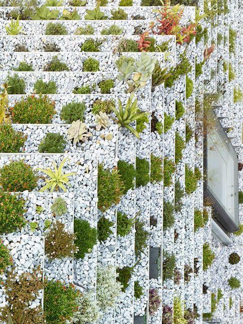 İlham Verici Bir Şehir Bahçeciliği Örneği