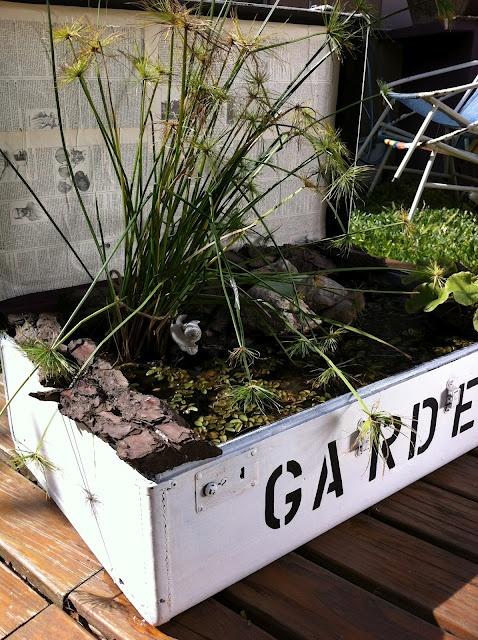 Decoración Vintage Blog: Reciclados. Una valija con una bolsa tipoconsorcio dentro engrampada. Así se puede crear un pequeño jardín de plantas flotantes