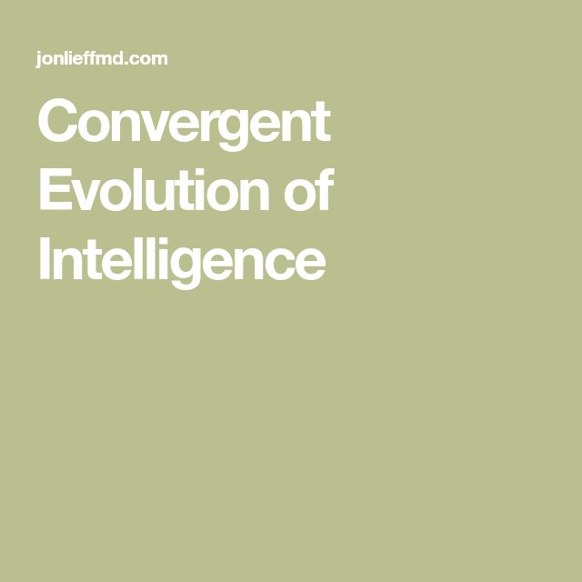 Convergent Evolution of Intelligence