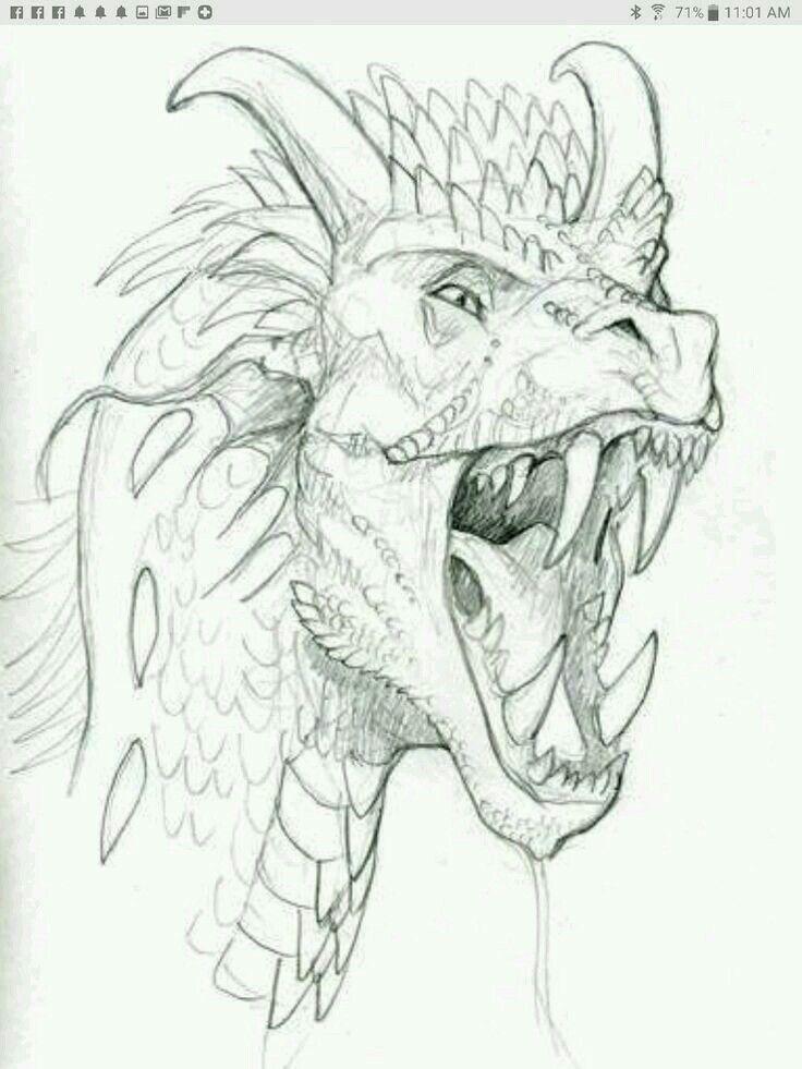 Pin De Manuel Carrasco Bustamante En Macb Como Dibujar Dragones Dragones Dibujo De Dragon