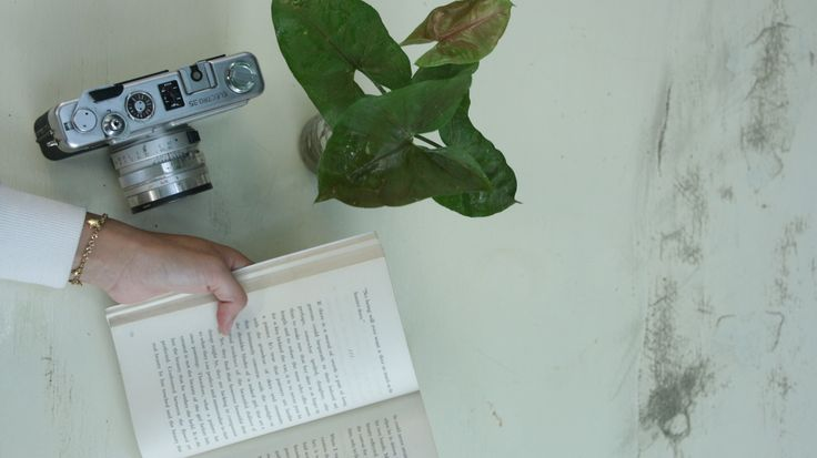 I love myself better when i'm with you, book, camera, wind, and plants.