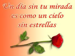 rosas hermosas con frases de amor novio