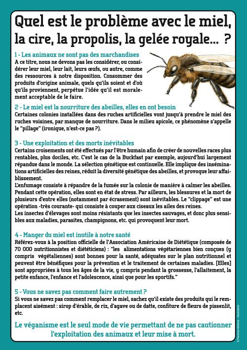 Quel est le problème avec le miel ?© Florence Dellerie