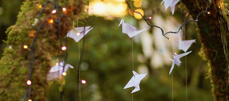 Свадебный распорядитель- Екатерина Захожая | Бумажные журавлики над городом