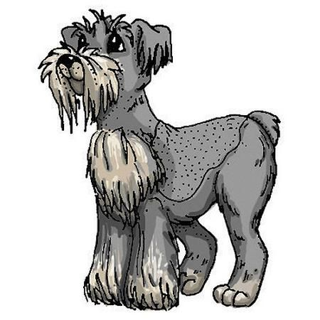Art Impressions Dogs Cling Rubber Stamp, Schnauzer