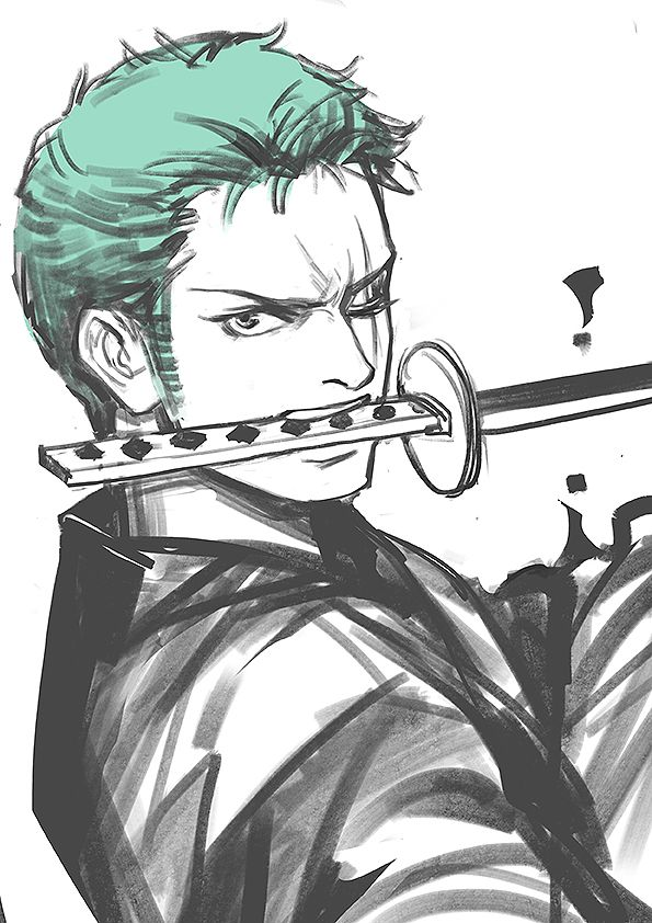 350 best images about roronoa zoro on pinterest chibi lost and swords - Zoro one piece dessin ...
