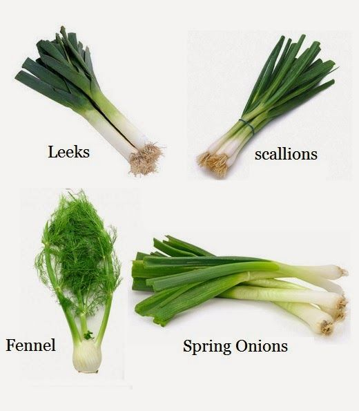 101 Gardening: How to Re-Grow Leeks, Scallions, Spring Onions and Fennel from Kitchen Scraps