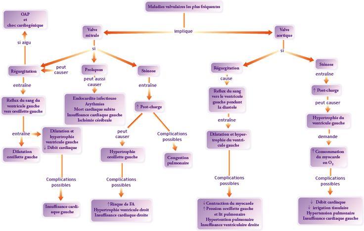 OIIQ - L'anticoagulation dans la pratique infirmière