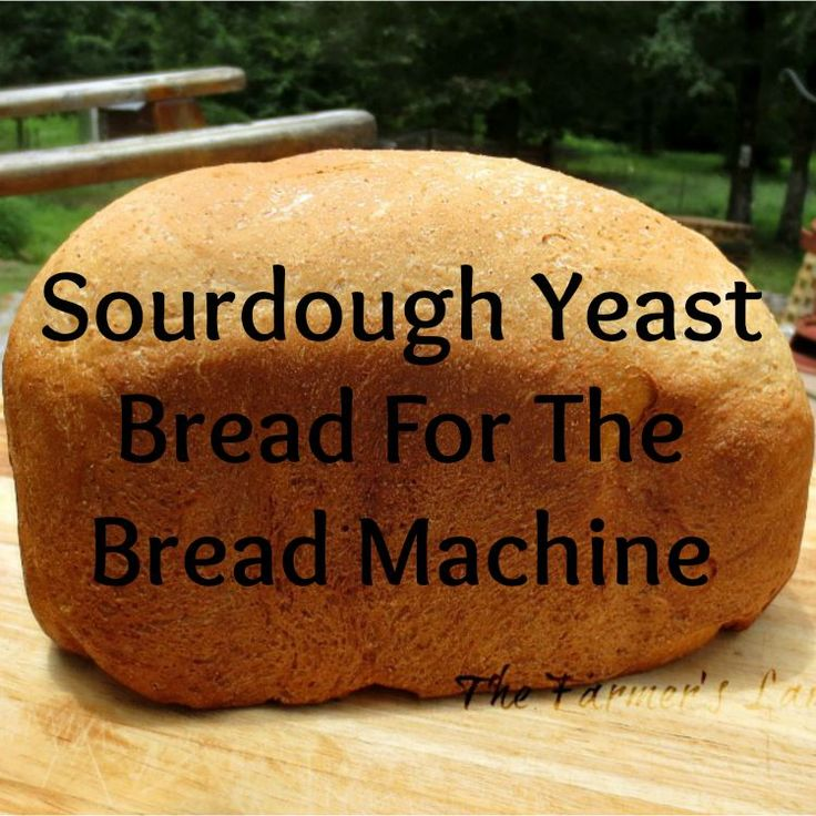 Sourdough Yeast Bread For The Bread Machine. Plus my Best Bread Making Tips and Tricks - from my kitchen to yours.