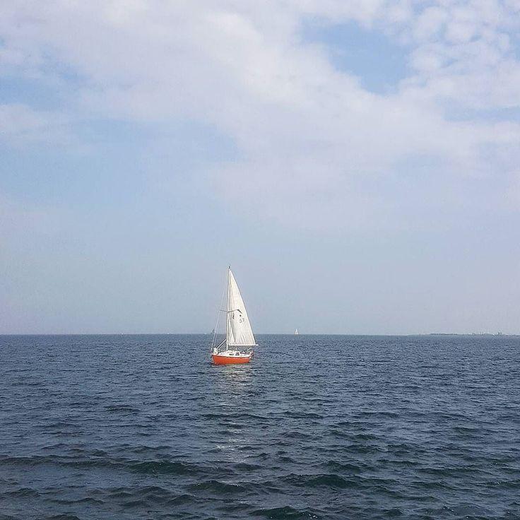 Our App for easy booking and parking at guest harbors is launching soon   #harba #sailboat #sejlerliv #sejlads #sejlbåd #sejle #sail #segeln #segelboot #boot #hafen #havn #harbour #sailing #københavn #denmark #aarhus #odense #lystbådehavn by harbaapp