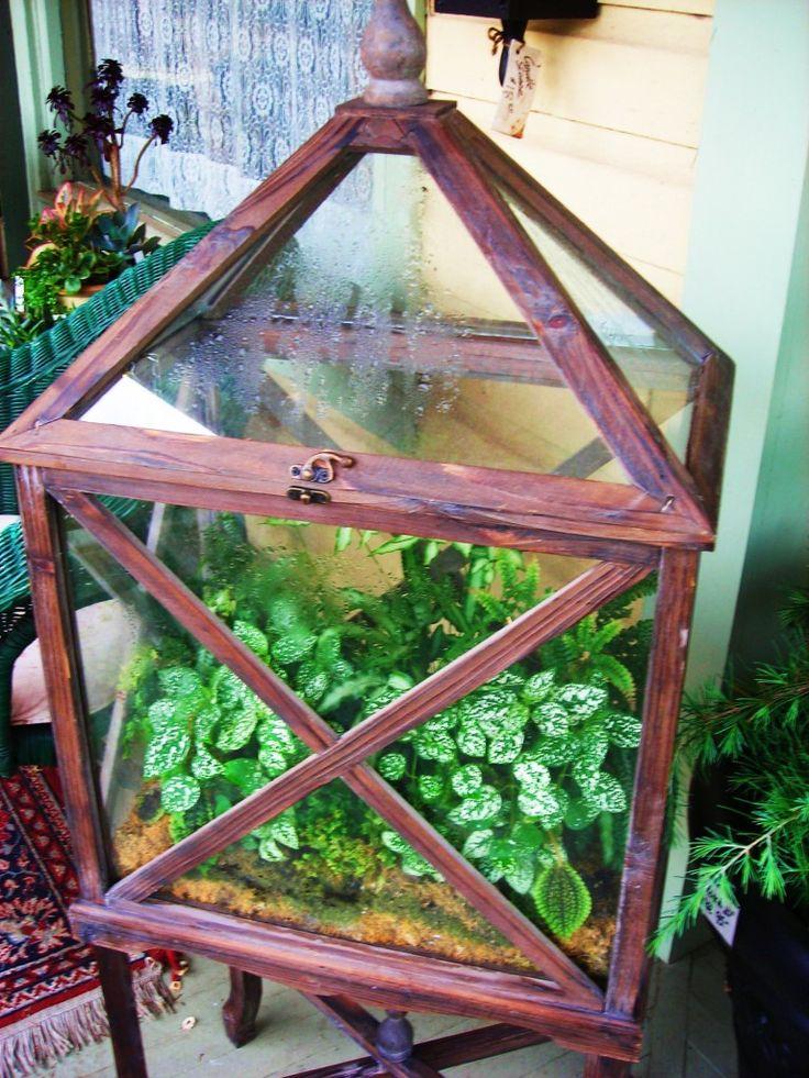 1353 Best Images About Terrarium Succulent Vertical On