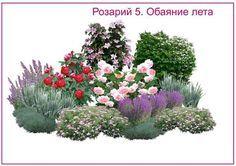 Розарии - создаём красивую клумбу на участке. СОЗДАЙТЕ ЦВЕТНИК НЕПРЕРЫВНОГО ЦВЕТЕНИЯ