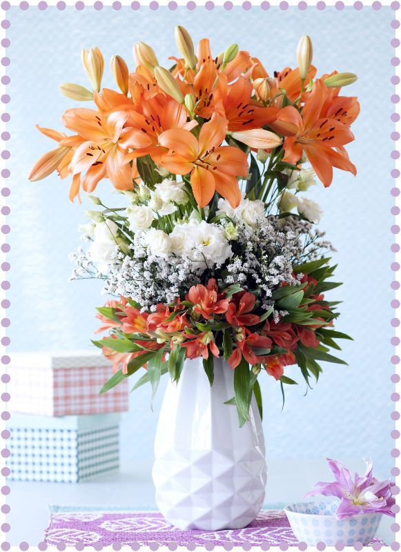 Holex Insights newsletter week 27: Lovely Lilies. Picture: funnyhowflowersdothat.co.uk
