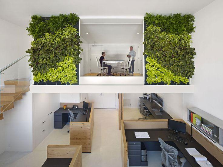 42 besten green walls bilder auf pinterest gr ne for Innenraumdesign studium