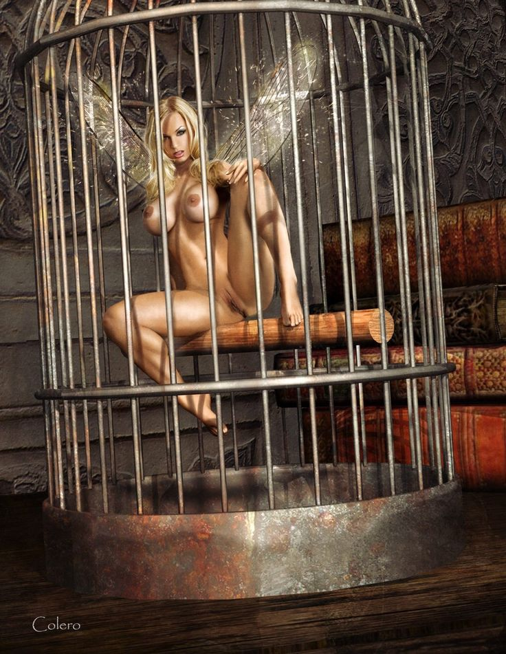 17 Best Images About Slave Girls In Cages On Pinterest -4334