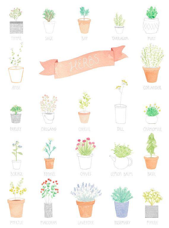 Cake, Amyborrel, Art Prints, Amy Borrel, Herbs Gardens, Herbs Illustration, Posters, Kitchens Prints, Kitchens Herbs