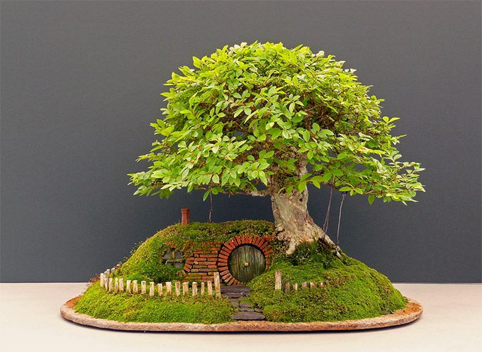 Tiny Hobbit Home Carved In Bonsai Tree Style 1
