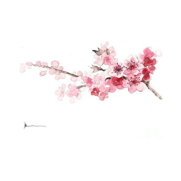 Pinterest ❤ liked on Polyvore featuring tree branch painting, tree branch wall art, floral paintings, pink blossom tree and tree paintings