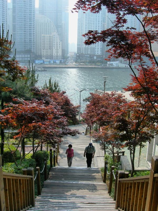 Busan-This is where my Mom was born and raised... it is beautiful there:)