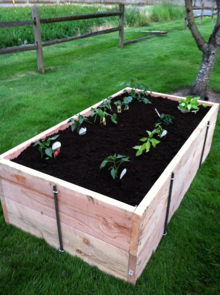 Planter box garden ideas pinterest for Planter box garden designs