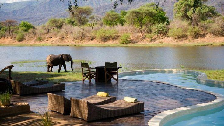 Chongwe River House, Zambia Θα έχετε και παρέα…