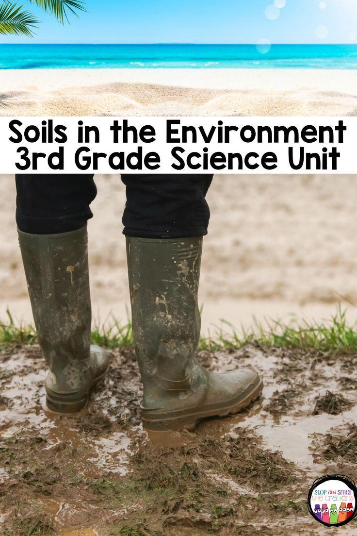 Soils In The Environment Grade 3 Science Grade 3 Science Third Grade Science Science
