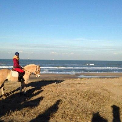 Horse back riding in Scheveningen a must ride!
