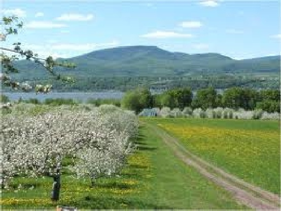 Ile de l'Orleans - This verdantly green island is cradled by the St.Lawrence between the Canadian Shield and the Appalachian Mountains. The rich farmland produces some of the farm-fresh produce that is such a highlight of the nearby restaurants of Quebec City.