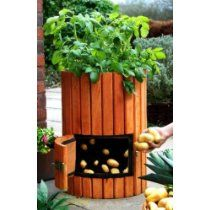 Small backyard landscaping ideas... grow potatoes on the patio!  #rrrsirgo #rrrlandscaping
