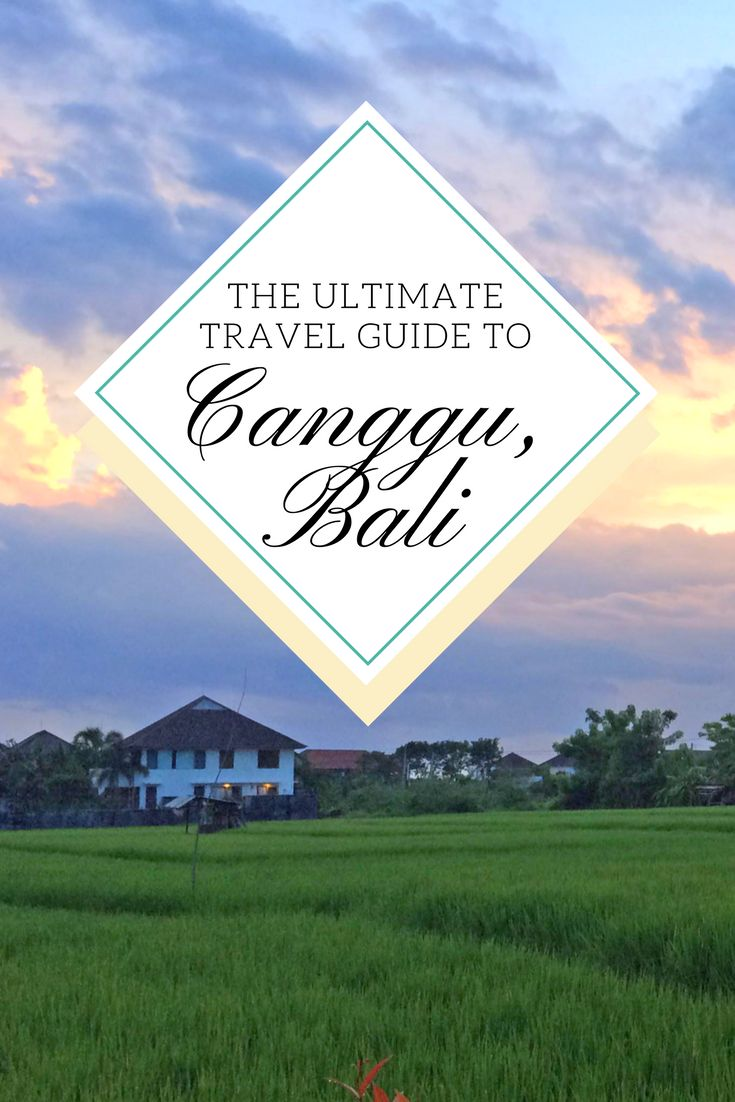 Canggu is slowly becoming popular by travellers and digital nomads seeking a life closer to the beach and surf-able waves. It's especially popular among expats which is visible with modern villas popping up between the lush green rice fields, great cafés and the proximity to many attractions around the island, including next door Seminyak. #Canggu #CangguBali #BaliHotspot #CangguLife