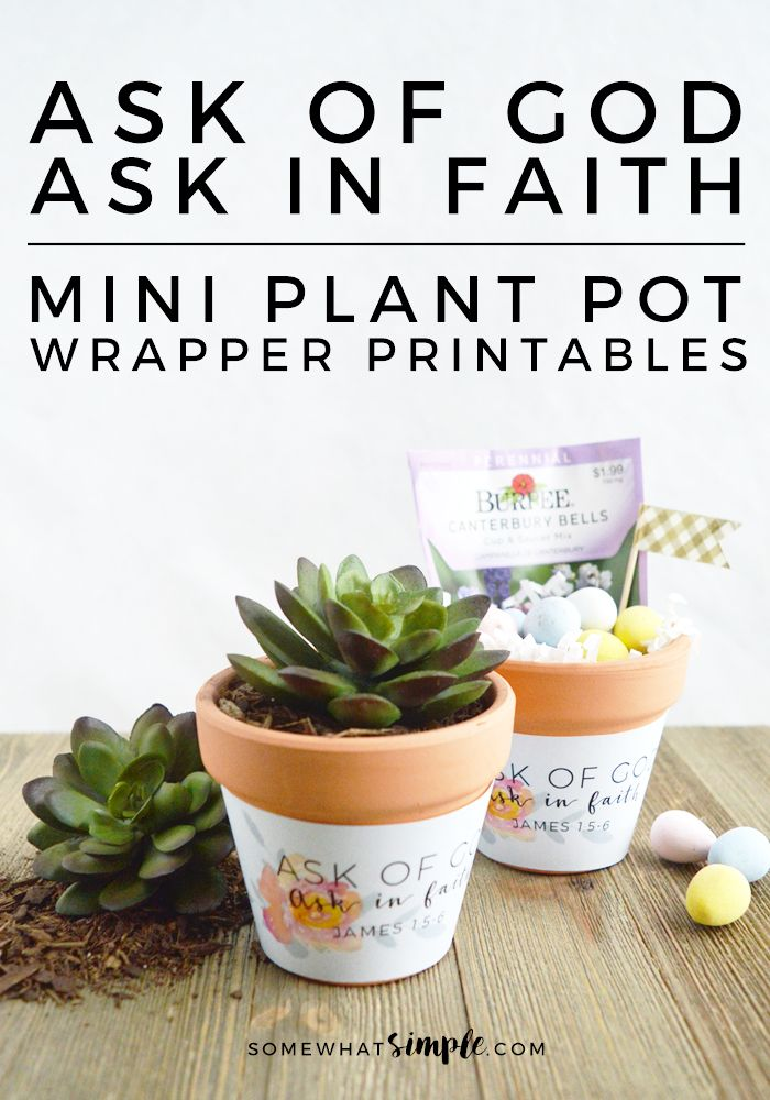 These darling Ask of God. Ask in Faith. Mini Plant Pot Wrappers are the perfect reminder when life gets tough. Great for church handouts, and gifts.