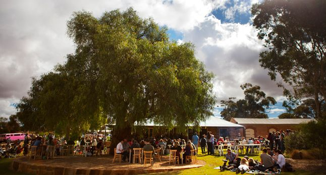 2013 Barossa Gourmet Weekend - 16th to 18th August  - join Pindarie Wines for a relaxing day of food, wine and music.