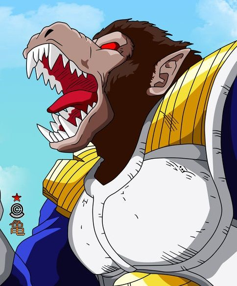 17 Best Images About 亀 DRAGON ★ BALL 悟 On Pinterest