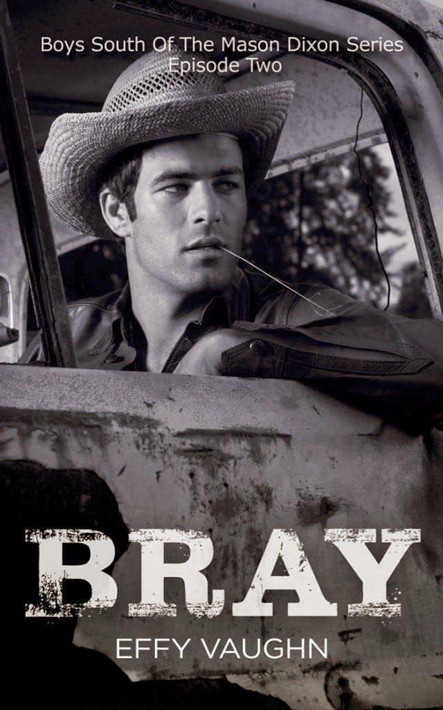 Bray The Boys South Of The Mason Dixon 2 By Effy Vaughn Book