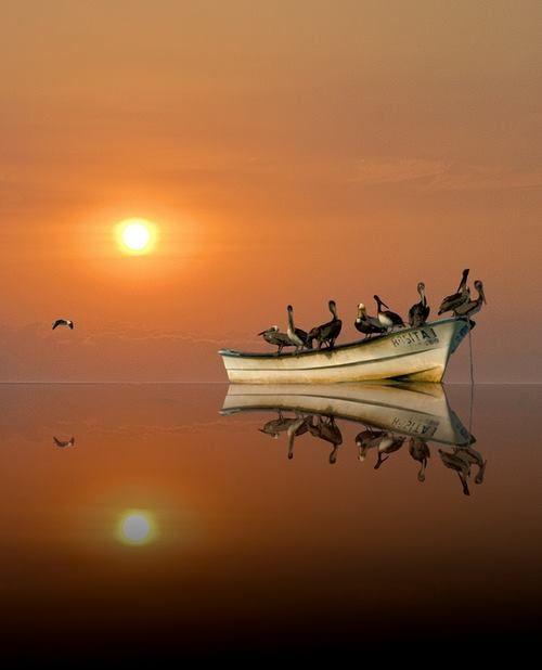 """""""Una sosta non è un fermarsi...è un respiro nel fluire del tempo""""  - ©Riflessi d'acqua -  *Immagine reperita nel Web  Riflessi d'acqua-diventa fan"""