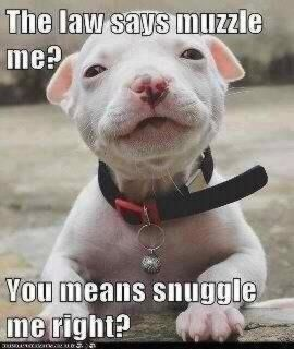 Snuggle with me...