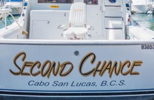 Cabo San Lucas fishing charters is one of the most thrilling as well as fascinating water sport endeavors. We offer specialties in cabo fishing and sport fishing. Click the link to find out more.    #CaboSanLucasfishingcharters
