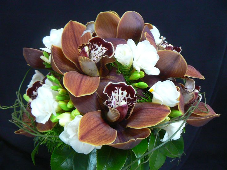 Beautiful chocolate coloured cymbidium orchids in a posy with white freesias